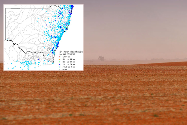 Article image for 'It does really give people hope': Rainfall a much-needed boost for farmers