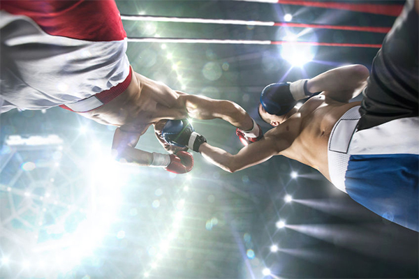 Article image for 'The time has come to ban boxing': New boxing laws bashed