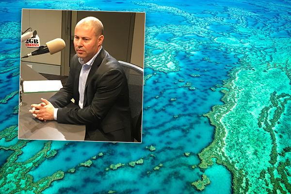 Article image for Treasurer says $444-million grant is justified, 'the Barrier Reef needs more funding'