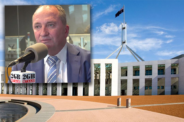 Article image for 'It's disappointing': Barnaby speaks out on former PM