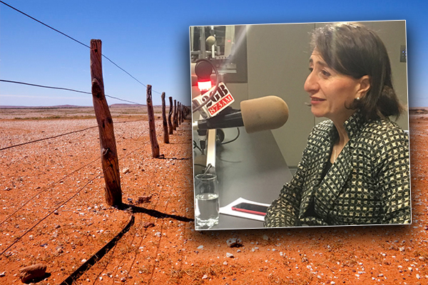 Article image for 'We're in a man-made drought here': The failings of the NSW government