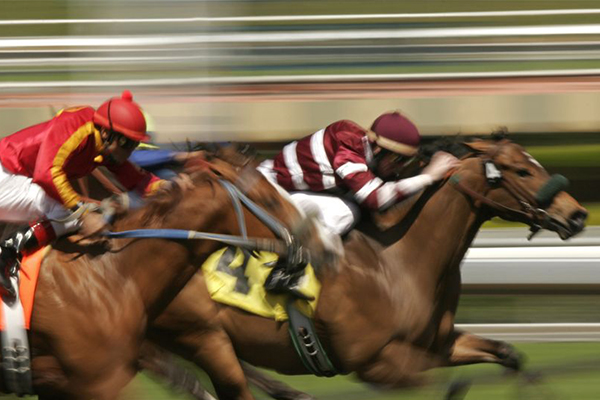 Article image for New consumption tax could bring racing industry 'to its knees'