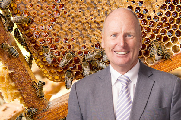 Conflict of interest in Aussie honey scandal