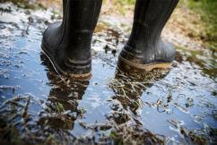 When our farmers can expect rain next