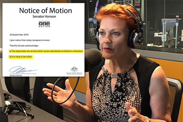 Article image for 'It's slowly creeping in': Pauline Hanson calls for action on rise in 'anti-white racism'