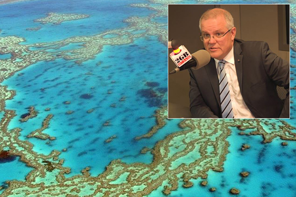 Article image for 'That's not how it was done': PM won't back down on controversial $444-million barrier reef grant