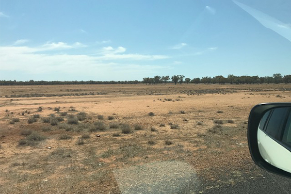Despite recent rain, farmers still battling dusty, dry drought