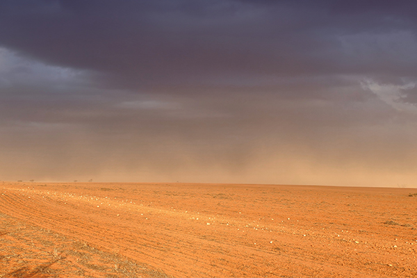Article image for 'It's a bit of a lottery': Drought-ravaged areas finally receiving some relief