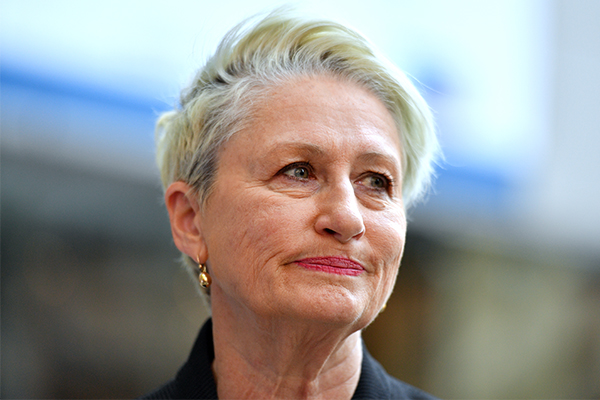 Article image for Kerryn Phelps: The past 48 hours have been a 'white-knuckle ride'