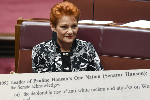 Article image for White or wrong? Pauline Hanson loses 'okay to be white' motion in parliament