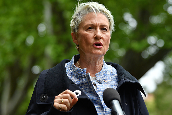 Article image for Kerryn Phelps 'not surprised' by Turnbull's Wentworth absence