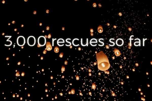 Destiny Rescue celebrates 3000 lives saved
