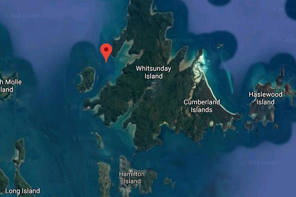 Article image for Shark attack: Man dies after being mauled in the Whitsundays