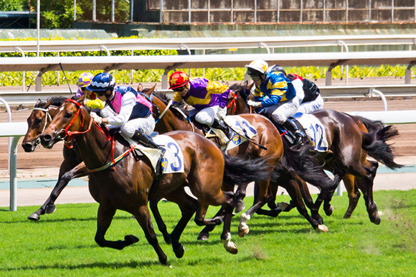 WA Government considers new racehorse measures after shocking claims about industry