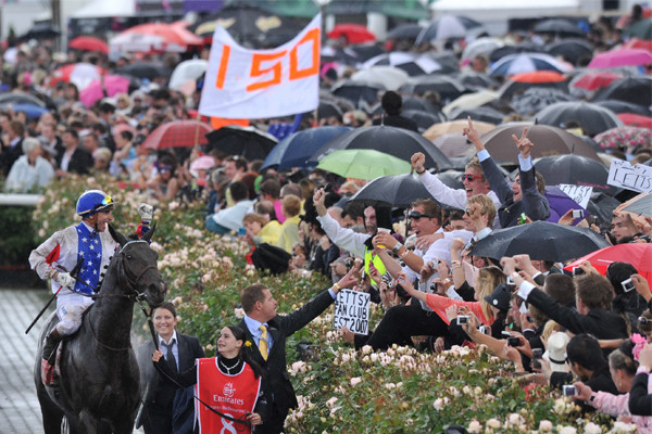 Article image for Ultimate Melbourne Cup guide