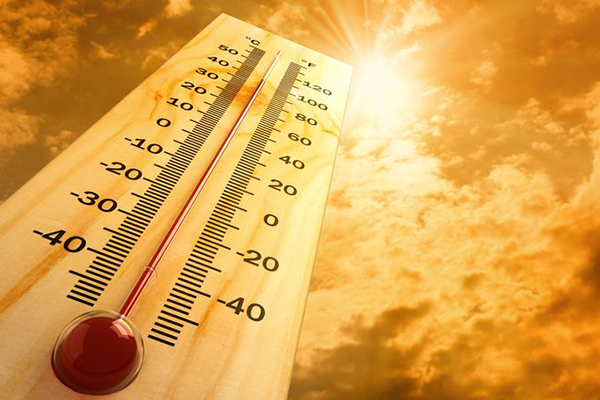 Article image for Scorching weather triggers energy reserve warning