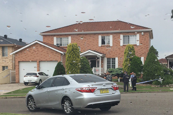Bossley Park: Man stabbed in the chest in Sydney's south-west
