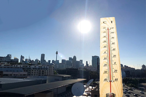 Article image for Sydney swelters: Safety warnings issued as temperatures soar