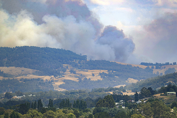Article image for Tasmania bushfires update: 'They will take weeks before they can be extinguished'