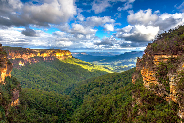 Article image for The world's largest festival you've never heard of… in the Blue Mountains!