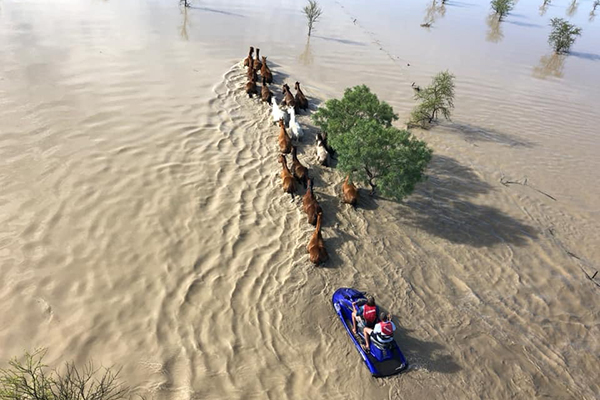 Article image for 'It is a national disaster': QLD Farmers face a devastating future