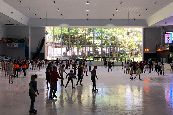 Community rallies to save Macquarie Centre's ice rink from demolition