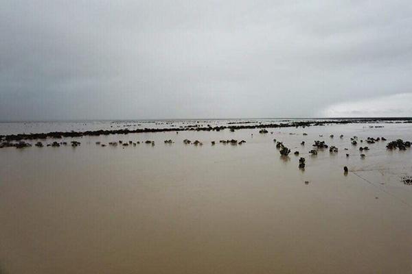 Scott Morrison focused on floods not polls, despite major boost