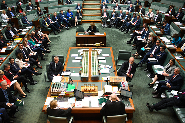 'They've just stopped functioning': Labor hits out at 'bizarre' day in politics