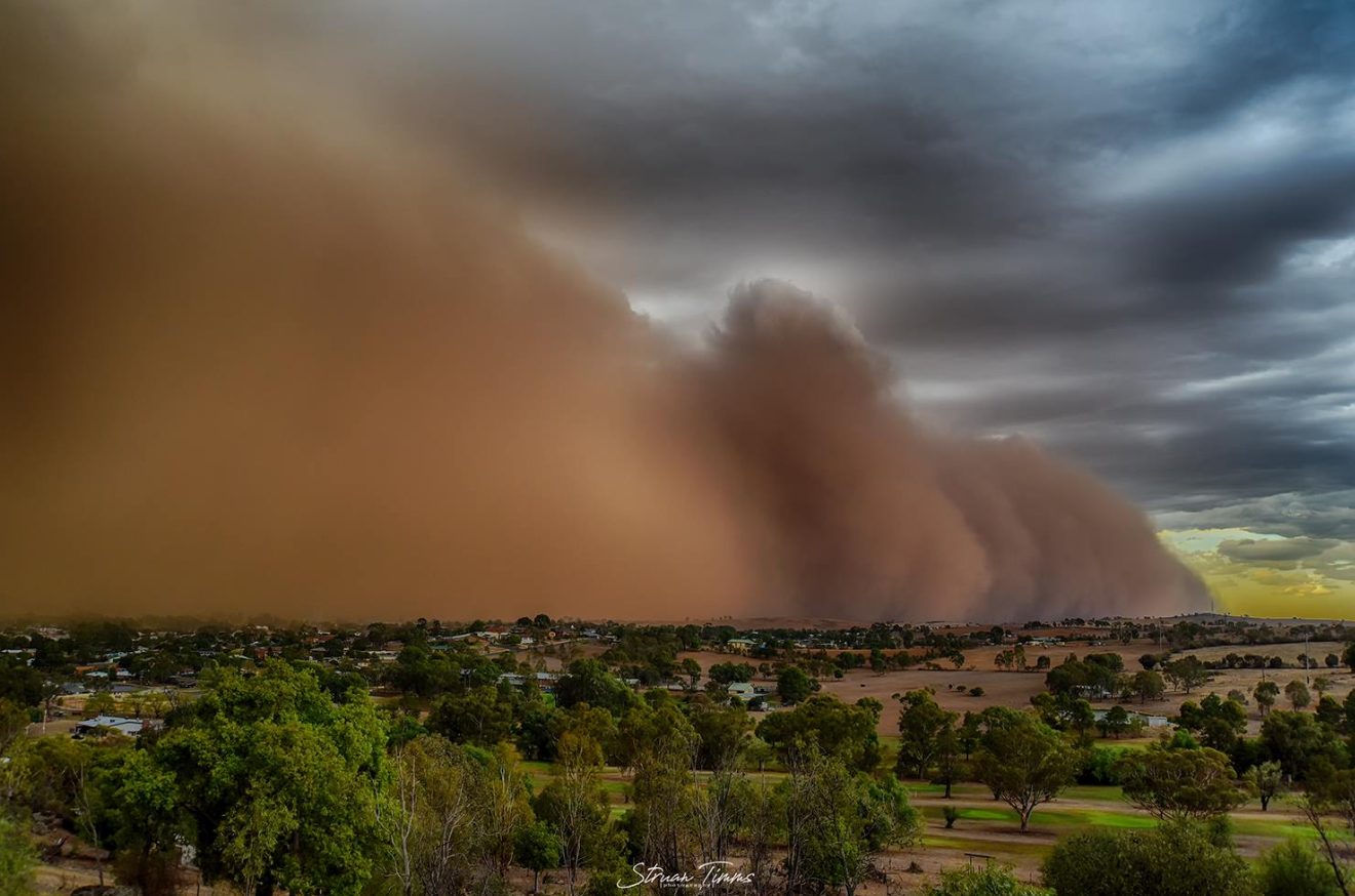 Article image for Amazing photos of a NSW dust storm