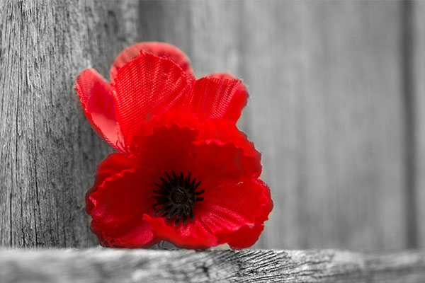 Lest we forget: Family members remember their veterans