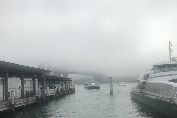 Flights and ferries cancelled as fog takes over Sydney
