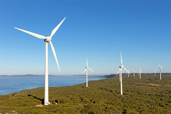 Major Crisis Wind Farm Fears In Wake Of Labor S Climate