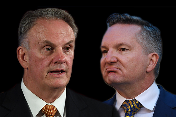Article image for 'What planet is Chris Bowen living on?': Mark Latham slams Labor leadership candidate