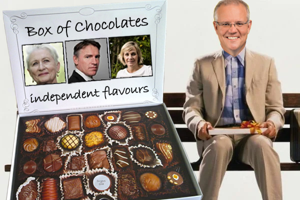 Scott Morrison says Independents are 'like Forest Gump's box of chocolates'