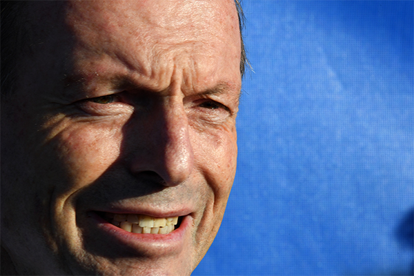 Article image for Tony Abbott has lost his seat of Warringah after 25 years