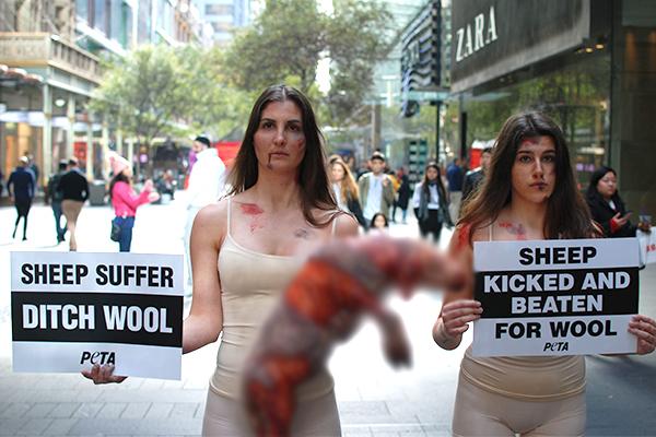 PETA stages disturbing protest in city centre