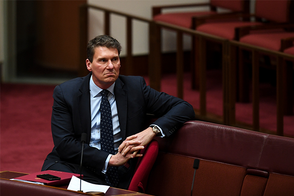 Article image for 'My time is drawing to an end': Bernardi signals political retirement