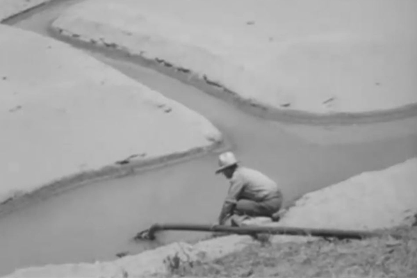 'What would they be saying if it happened today?': Dried up Hawkesbury River in 1945