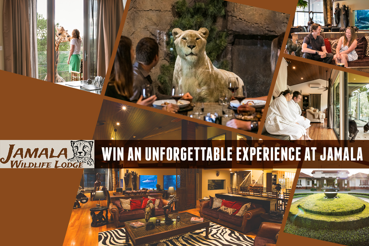 Win an unforgettable experience at Jamala