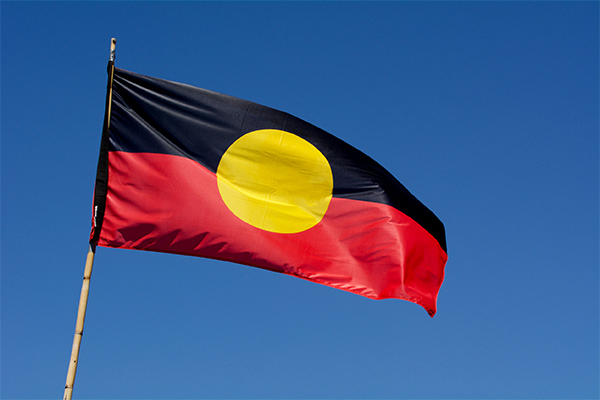 Article image for Fight to remove copyright on the Aboriginal flag