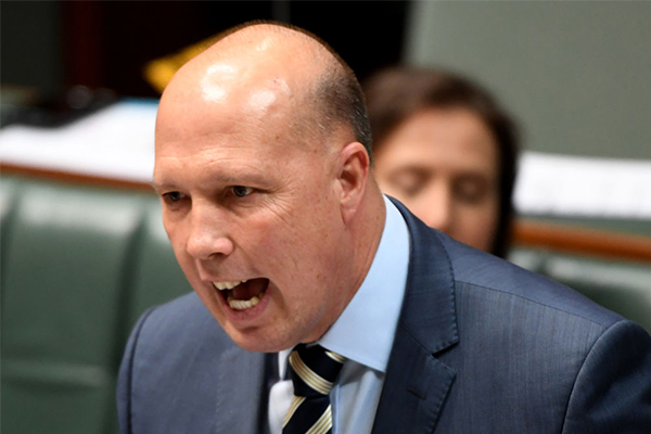 'Bizarre tactic': Dutton rips into Labor for flip-flopping over foreign fighter laws