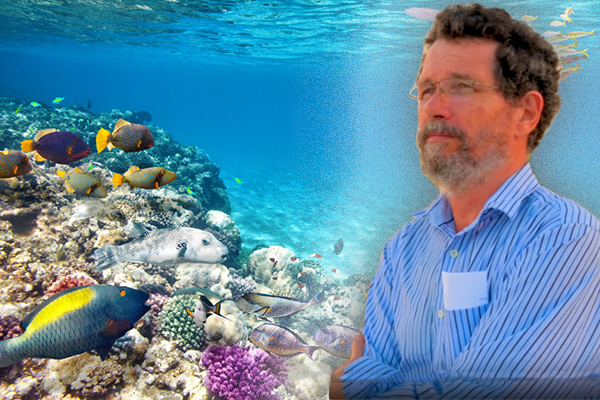 Article image for 'Triumph of misinformation': Professor slams Great Barrier Reef 'hoax'