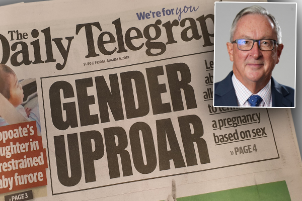 Minister slams Daily Telegraph for 'completely wrong' reporting on abortion bill