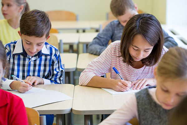 Article image for NAPLAN: Student results not improving despite $20b funding