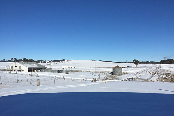 Article image for Snow blankets Oberon