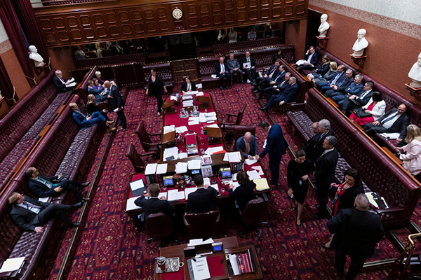 Article image for Bill passed   Abortion decriminalised in New South Wales