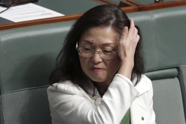 Article image for Barnaby Joyce says Gladys Liu saga is 'why we have ASIO'