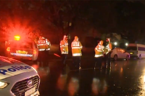 70yo woman fighting for life after being hit by 4WD