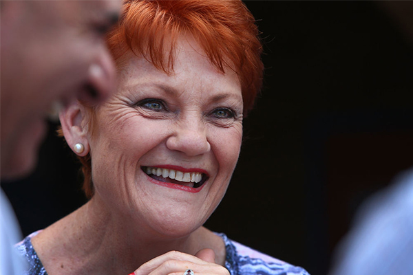 Article image for Pauline Hanson wins fight to launch inquiry into Family Court
