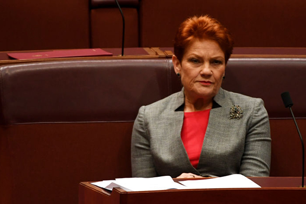 Article image for Legal expert slams Pauline Hanson for 'ridiculous' claims about Family Court